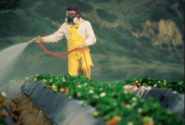 Топ-5 природных токсинов в нашей еде