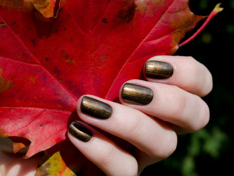 А как красиво сочетается с красными листьями