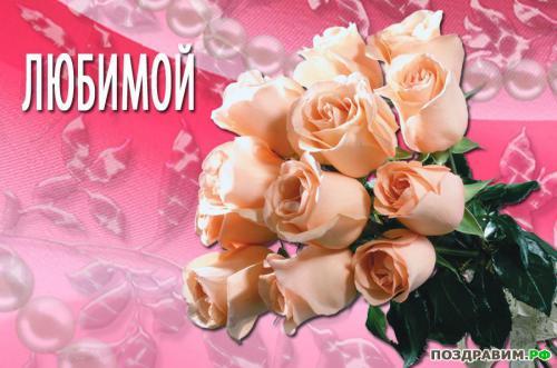 Любимой цветы