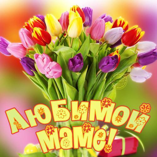Букет тюльпанов маме