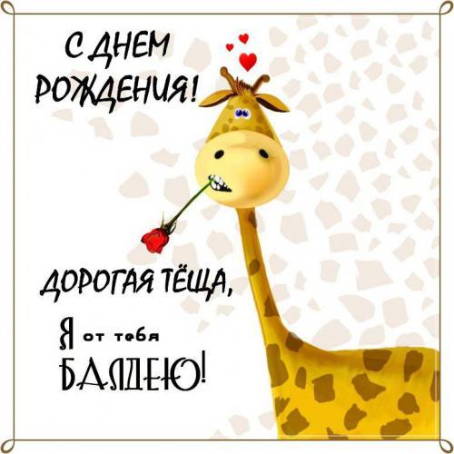 Жираф для тещи