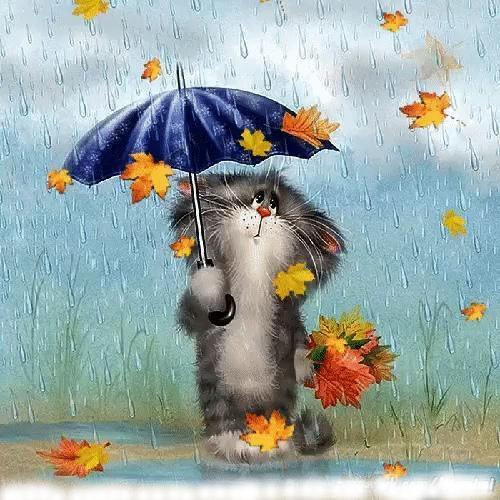 Кот с зонтом
