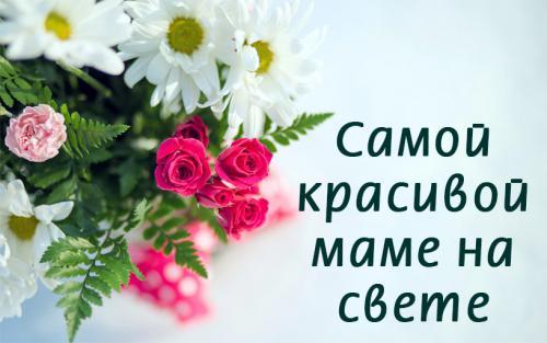 Самой красивой розы